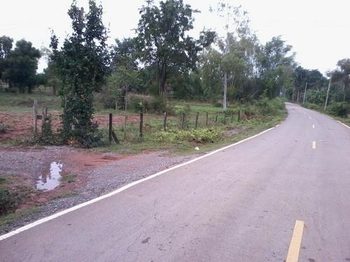 ขายที่ดิน 7 ไร่ 1งานราคา 170,000 บาทต่อไร่ ติดถนนลาดยาง ติดหมู่บ้าน อ.สีคิ้ว