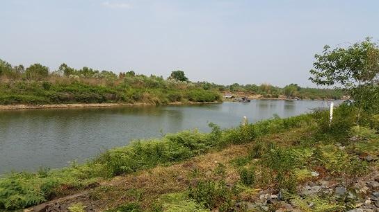 ขายที่ดิน สวยๆ 190 ไร่ ติดริมแม่น้ำมูล อ.คูเมือง ต.ประเคียบ ใกล้ฝายยางบ้านเขว้า